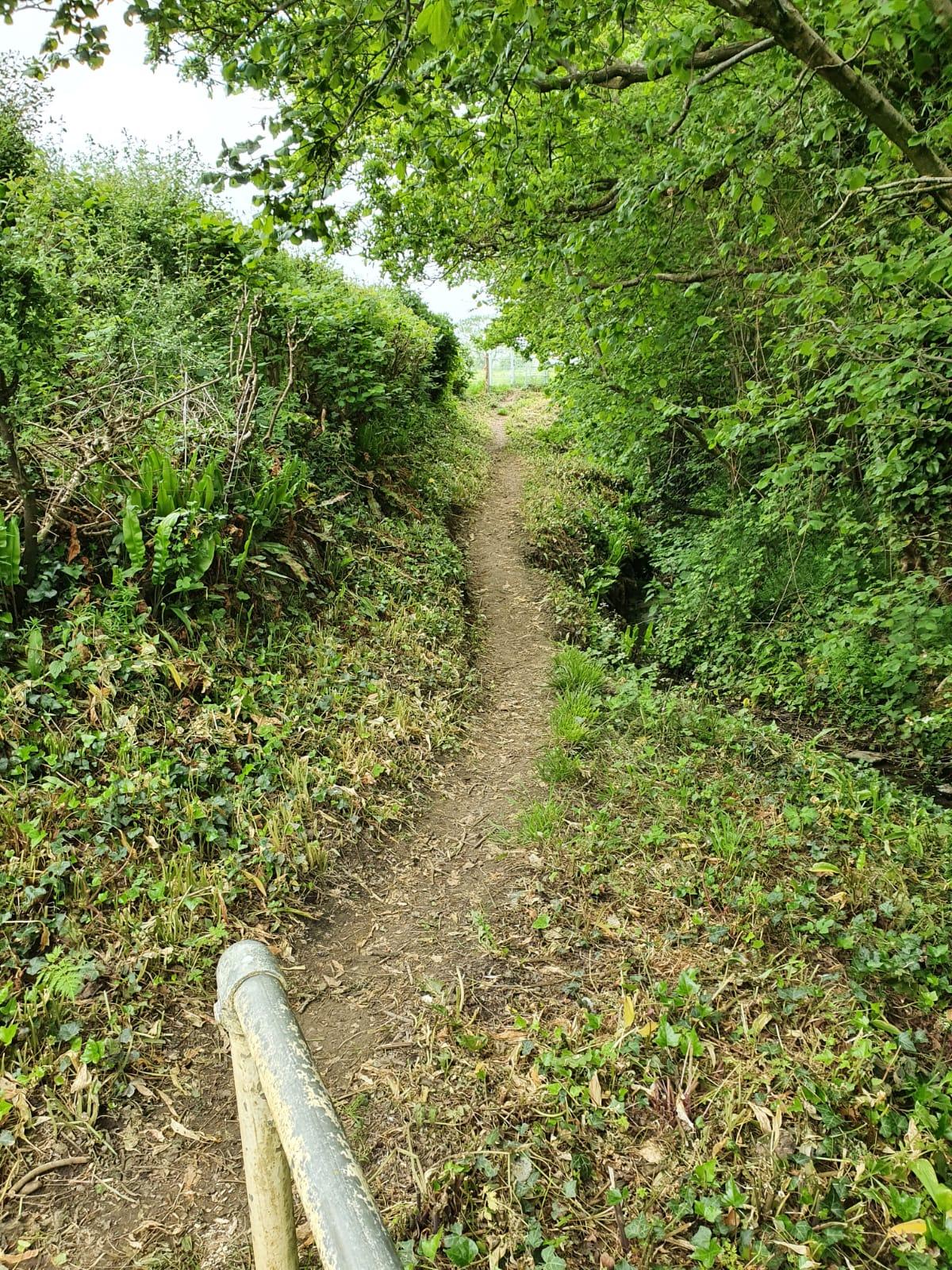 June 21 footpath