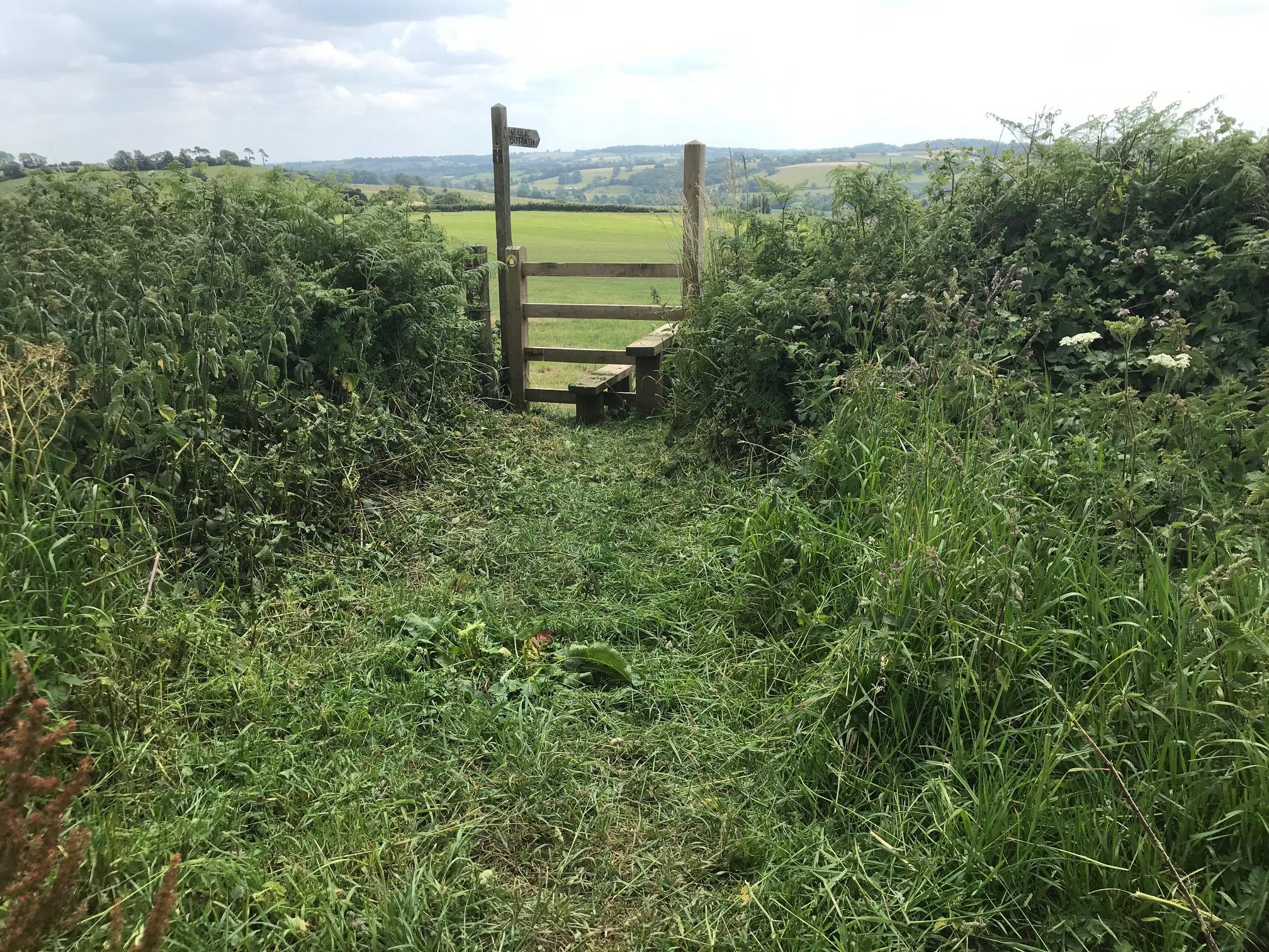 June Footpath to Bruton